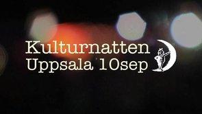 Kulturnatten 2010 (Demo)